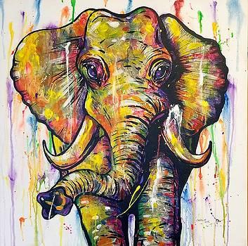 Elephunk by Sandra Lett