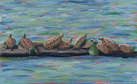 Eleven Turtles by Mary Elizabeth Thompson