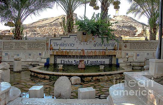 Elisha Serin's Fountain by Mae Wertz