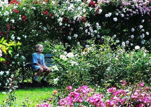 Elizabeth Garden Boy by Leonard Rosenfield