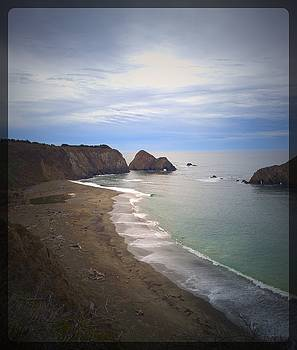 Lisa Dunn - Elk Beach