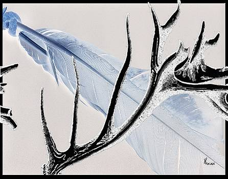 Elk Feather by Will Logan