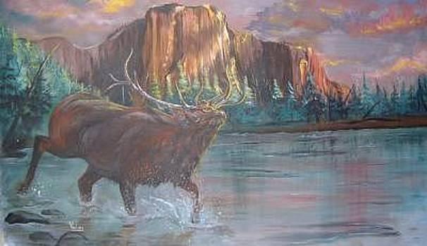 Elk In River by Merideth Van Every