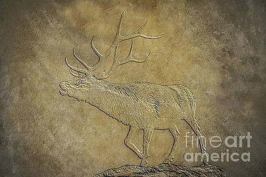 Randy Steele - Elk on Bronze Texture