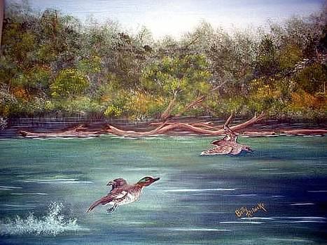 Elk River AL by Betty Reineke