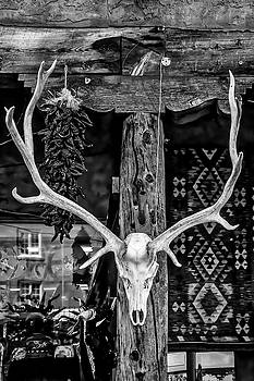 Elk Skull In Black And White by Garry Gay