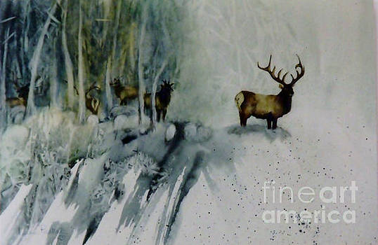 Elk With In by Lynne Parker