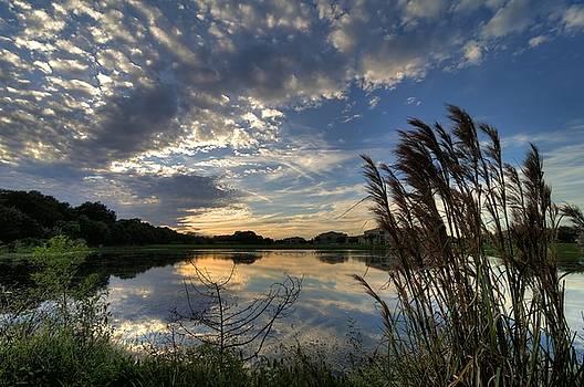 Ellenton Lake Sunset 05 by Jonathan Sabin