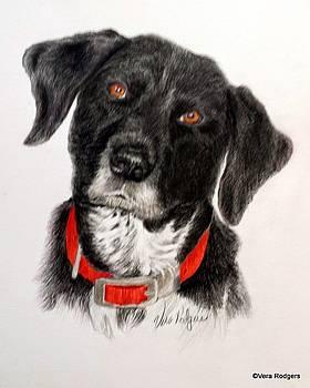 Ellie by Vera Rodgers