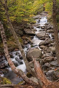 Ellis River Cascade by Tim Sullivan