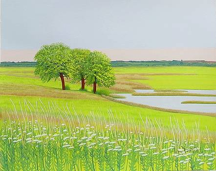 Elmley Marshes, towards the A249 by Janet Darley