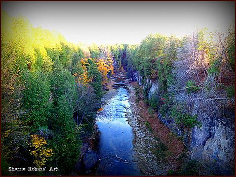 Elora Beauty by Sherrie Robins