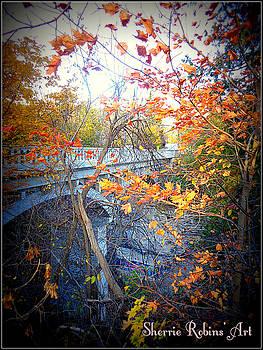 Elora Bridge by Sherrie Robins