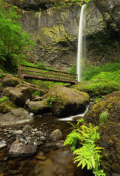 Elowah Falls Oregon by Matt Shiffler