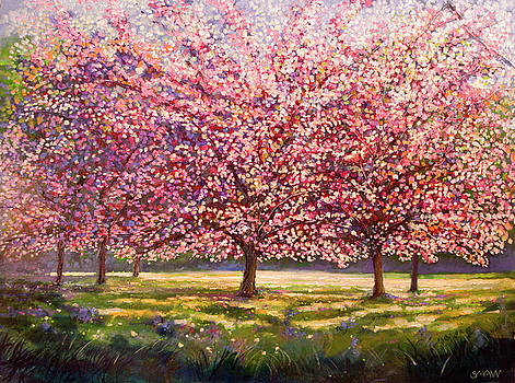 Elysian Cherryblossoms by Robert Shaw
