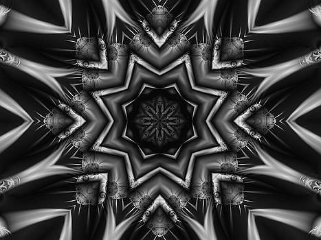 Embossed Kaleidoscope Fractal Poster by David Smith