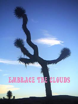 Embrace The Clouds by John Smolinski