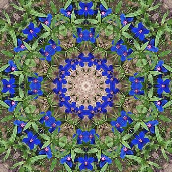 Emerald and sapphire botanical mandala by R V James