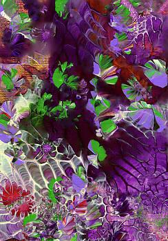 Emerald Butterflies of Costa Rica by Nan Bilden