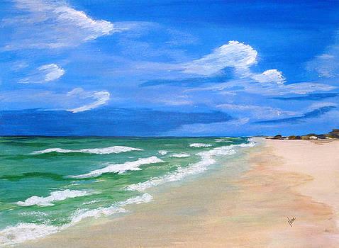 Emerald Coast by Nancy Nuce