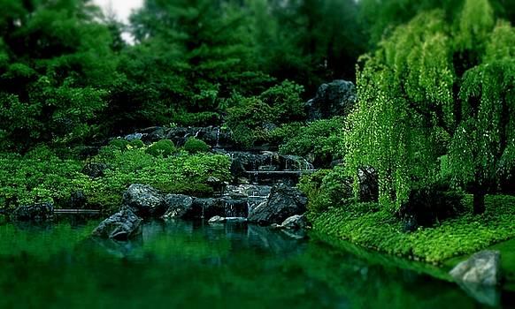 Emerald Dreams by Rodney Lee Williams