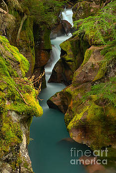 Adam Jewell - Emerald Green Avalanche Creek