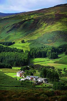 Jenny Rainbow - Emerald Hills 1. Wicklow. Ireland
