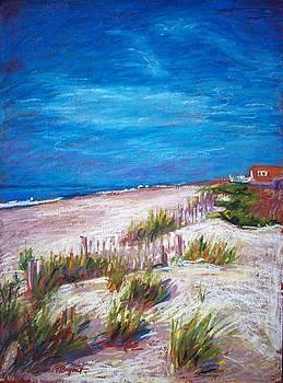 Emerald Isle Dunes by Bethany Bryant