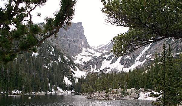 Emerald Lake in Rocky Mountain National Park by Donna Whitsitt