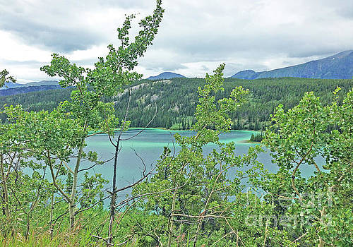 Emerald Lake Through the Trees by J Marielle