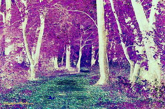 Buddy Scott - Emerald Path