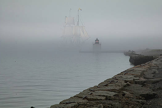 Emerging from the fog by Jeff Folger