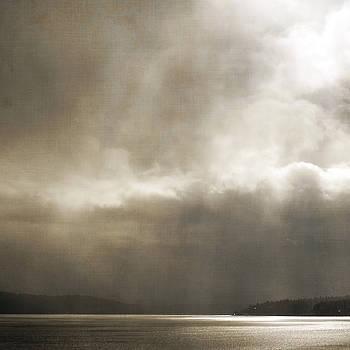 Emerging Light by Sally Banfill