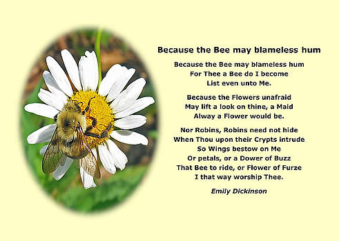 Emily Dickinson Poster Bee Naure Poetry by Maxwell