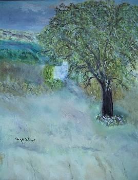 Emily's Tree by Aleezah Selinger