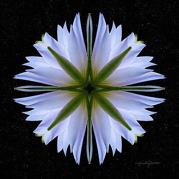 Emissary of Light Mandala by Karen Casey-Smith