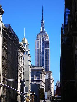 Empire State Building Manhattan by Donna Betancourt