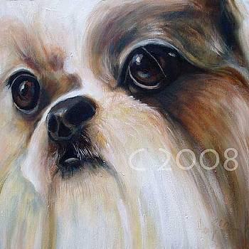 Empress Tsu by Lucky Dogs