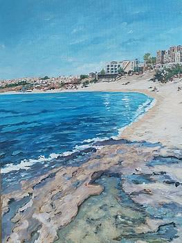 Empty beach by Ray Khalife