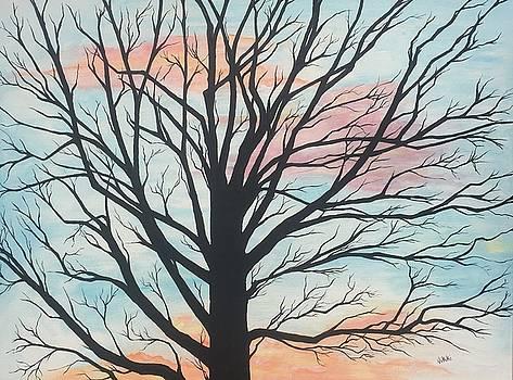 Empty Beauty by Vikki Angel