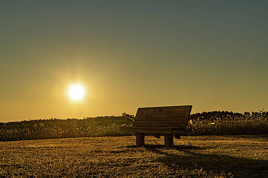 Empty Cavendish Beach Bench by Chris Bordeleau