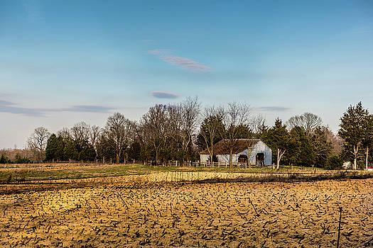 Empty Fields by Cynthia Wolfe