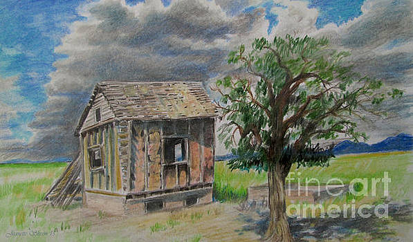 Empty Homestead  by Jeanette Skeem