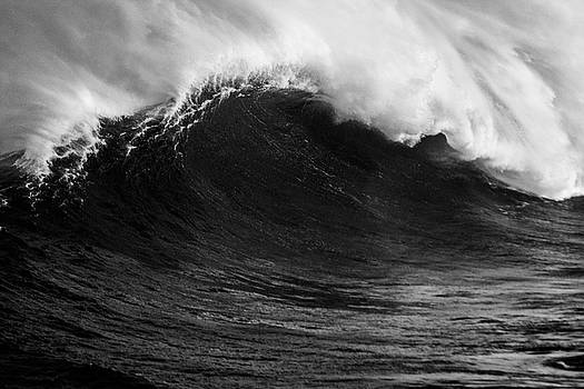 Empty Jaws Black and White by Brad Scott