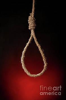 Empty Rope Noose by Aleksey Tugolukov