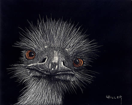 Emus In The Morning by Linda Hiller
