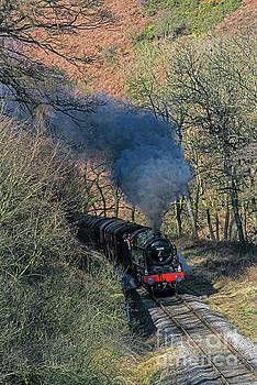 En Route to Goathland by David  Hollingworth