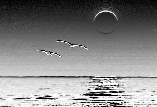 Enceladus Pelicans by Joe Schofield