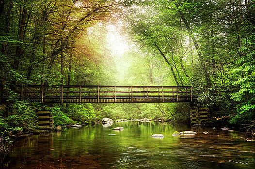 Enchanted Bridge in the Forest by Debra and Dave Vanderlaan