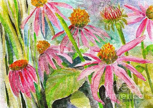 Enchanted Echinacea by Bev Veals